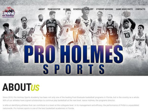 proholmessports.com