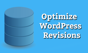 Disable and Limit WordPress Post Revisions