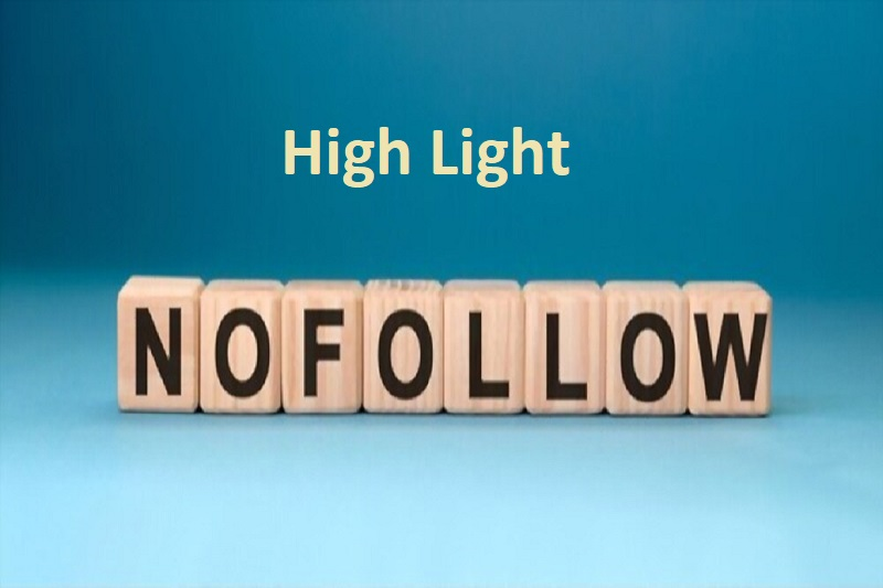 Highlight No Follow Links On Your Website